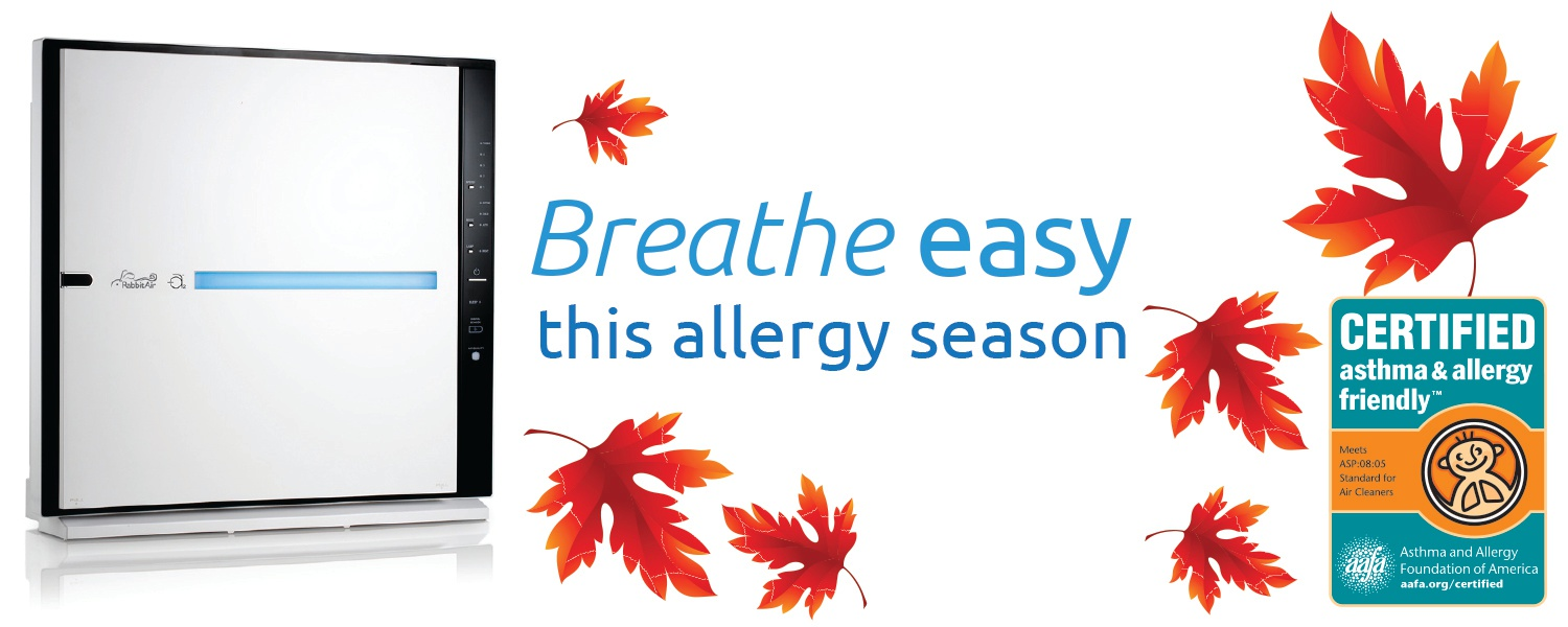 Breathe easy this allergy season